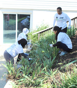 Rebuilding Together Work Day 2019, planting
